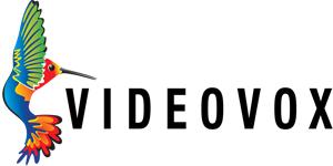 Ремонт VideoVox по гарантии